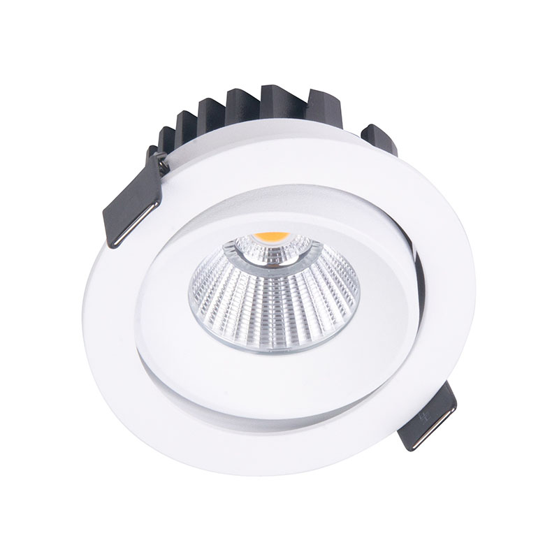 Įleidžiamas šviestuvas CYKLOP WHITE IP65