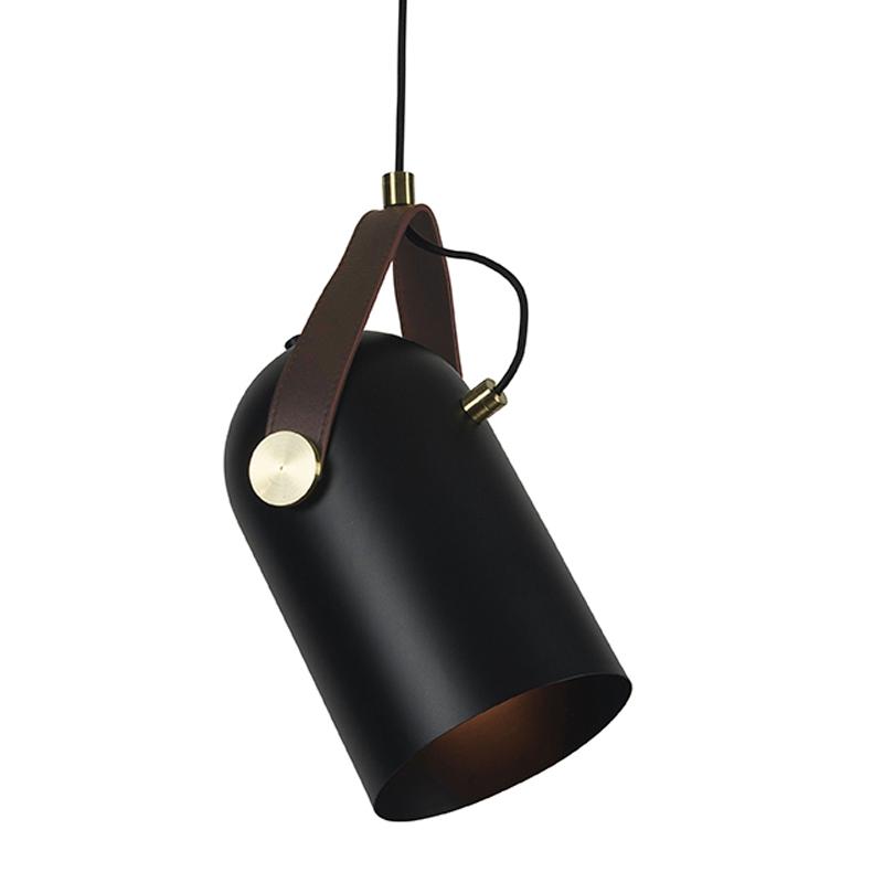 Pakabinamas šviestuvas 17072